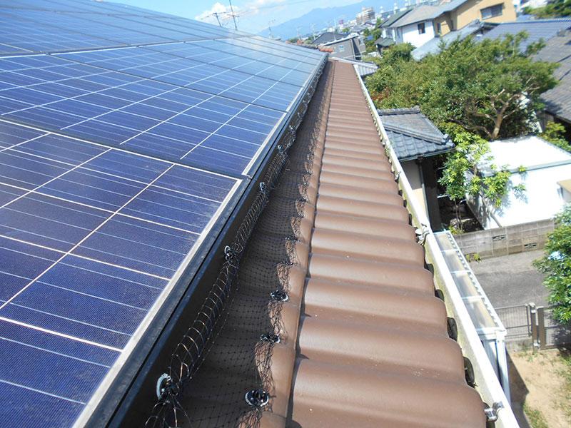 ソーラーパネルと屋根の隙間への侵入をバードネットで防止します。